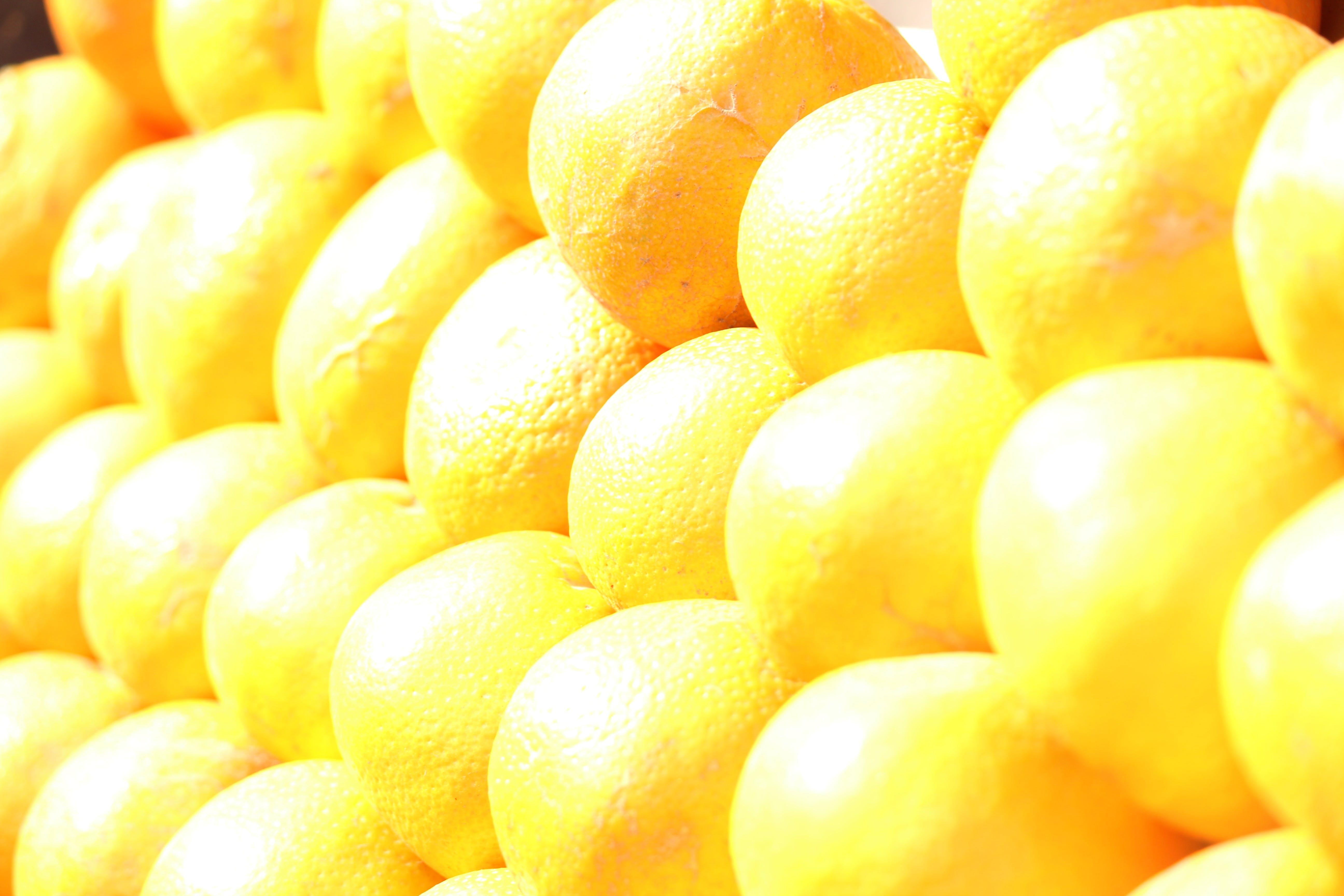 Free stock photo of citrus fruit, fruit, orange, oranges