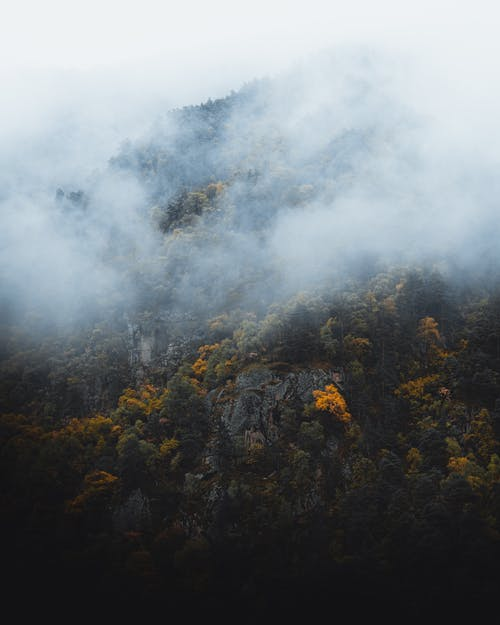 Kostnadsfri bild av berg, dimma, höst