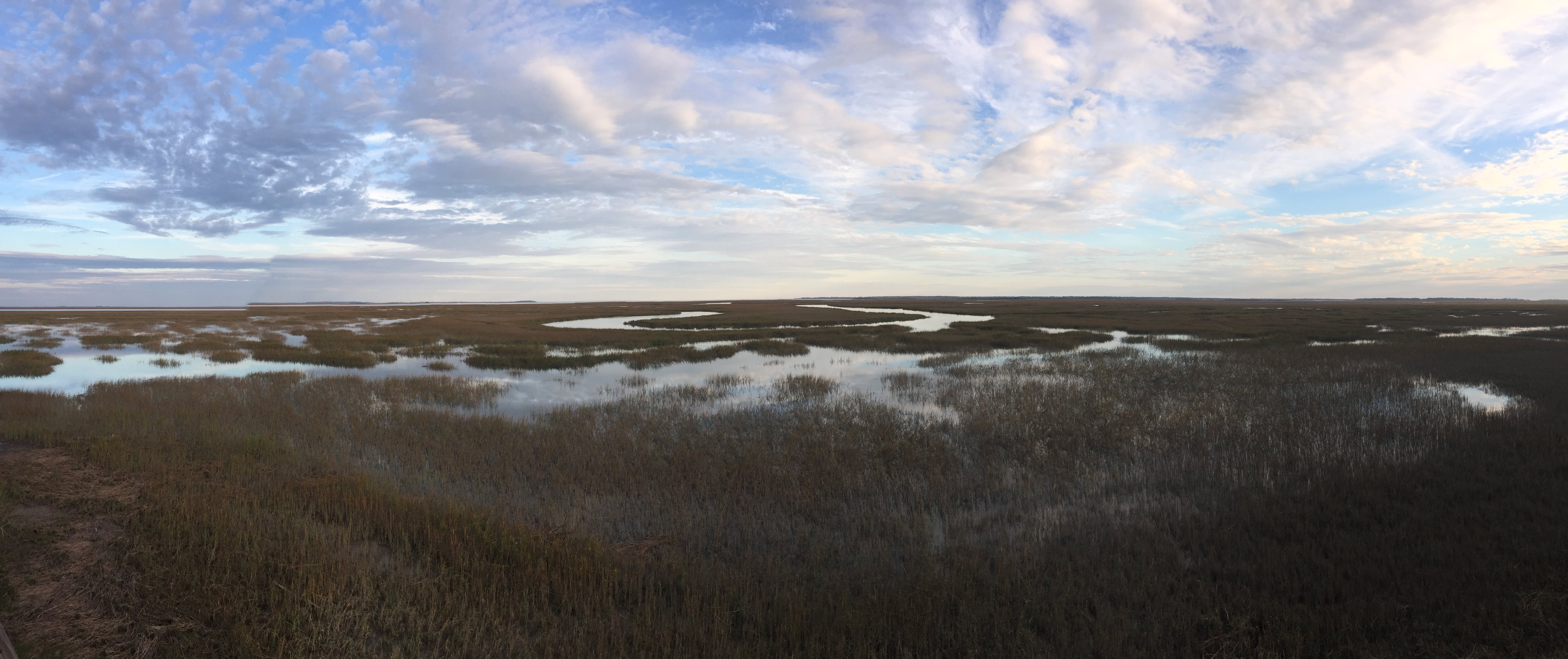Panoramic Photo Of River