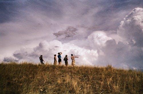 Δωρεάν στοκ φωτογραφιών με Άνθρωποι, βλέπω, γρασίδι