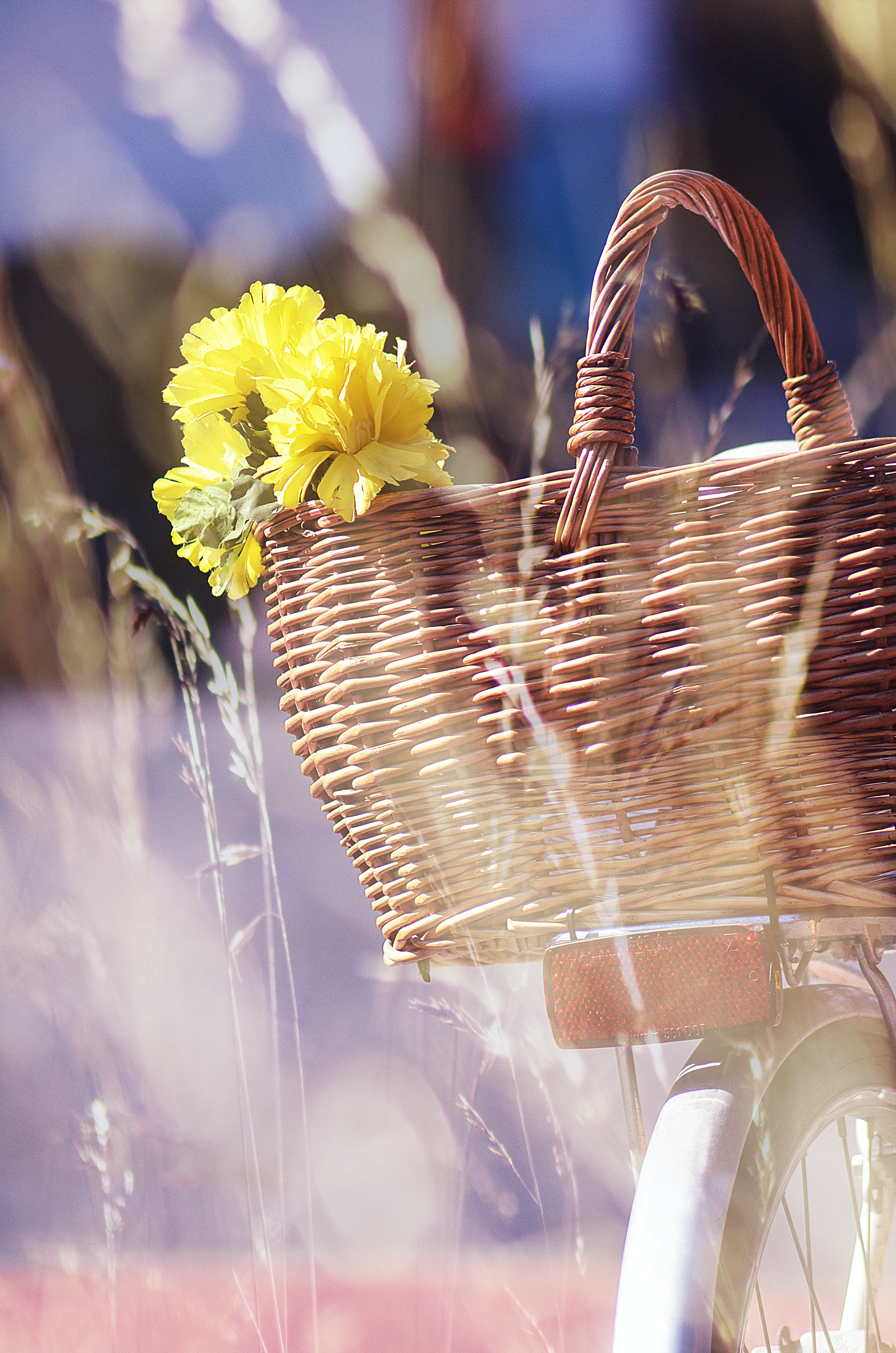 Brown Wicker Basket and Yellow Flowers