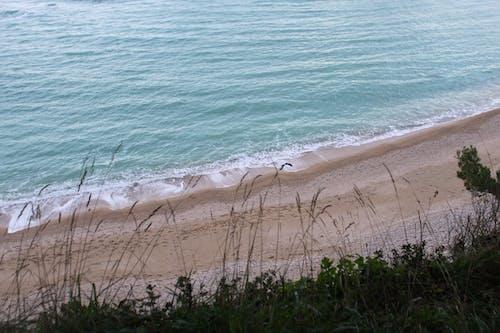 Gratis stockfoto met blauw, blauw water, bomen, golven