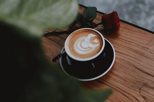 Imagine de stoc gratuită din adâncime de câmp, artă în cafea, băutură, cafea