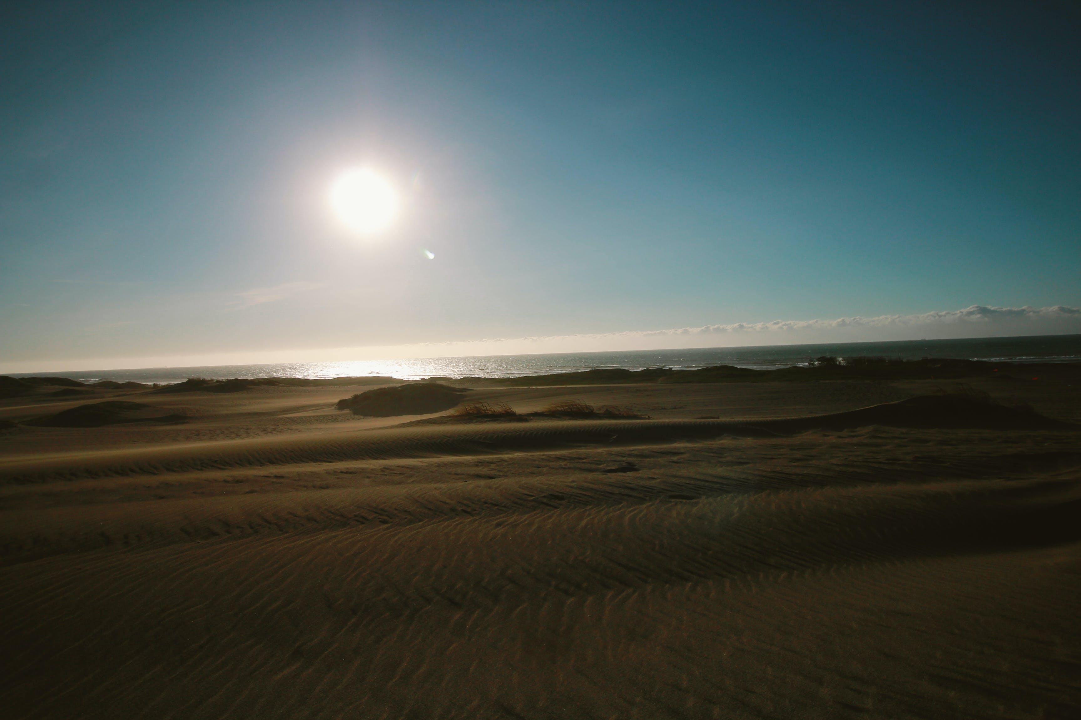Free stock photo of sand, sand dunes, sun