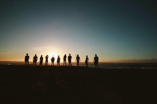 Бесплатное стоковое фото с активный отдых, берег моря, берег океана, вместе