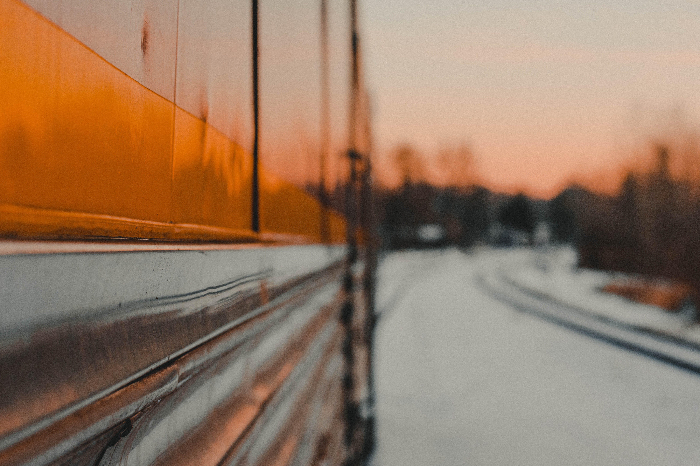 Grey and Orange Traine