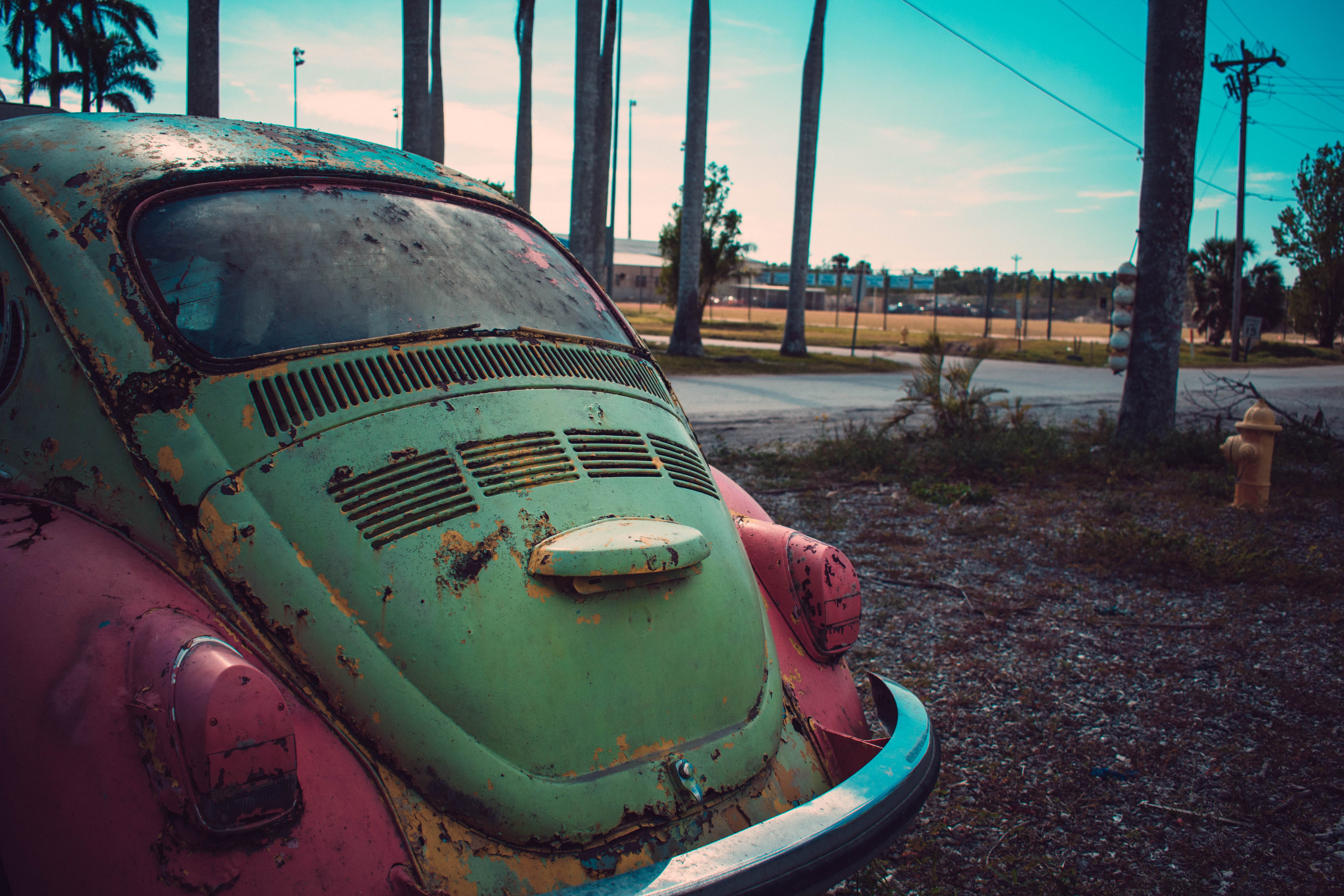 Photography of Green and Pink Volkswagen Beetle Parked Beside The Road
