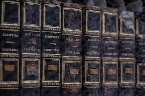 Бесплатное стоковое фото с библиотека, книги, книжная полка, ретро