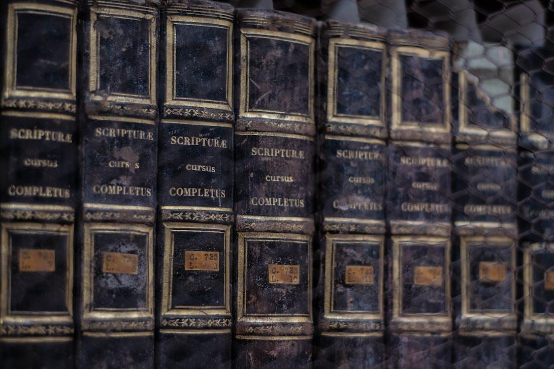 biblioteca, libri, scaffale