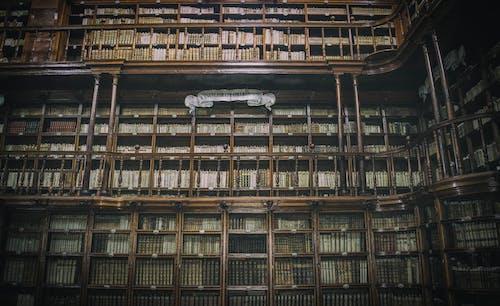 Бесплатное стоковое фото с архитектура, библиотека, в помещении, здания