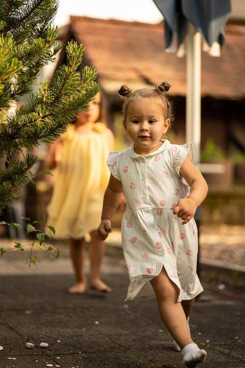 Photos gratuites de arbre, bébé, brioches