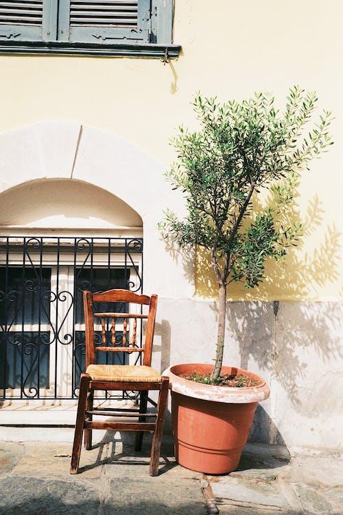 Immagine gratuita di centro storico, cidades antigas, facciata di edificio