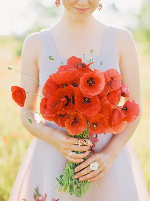 Close-up of Woman Holding Bunch of Red Poppies in Field