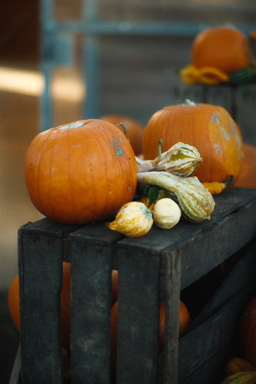 Freshly Harvested Pumpkins on Wooden Crate