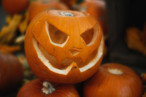 JackO Lantern and Pumpkins