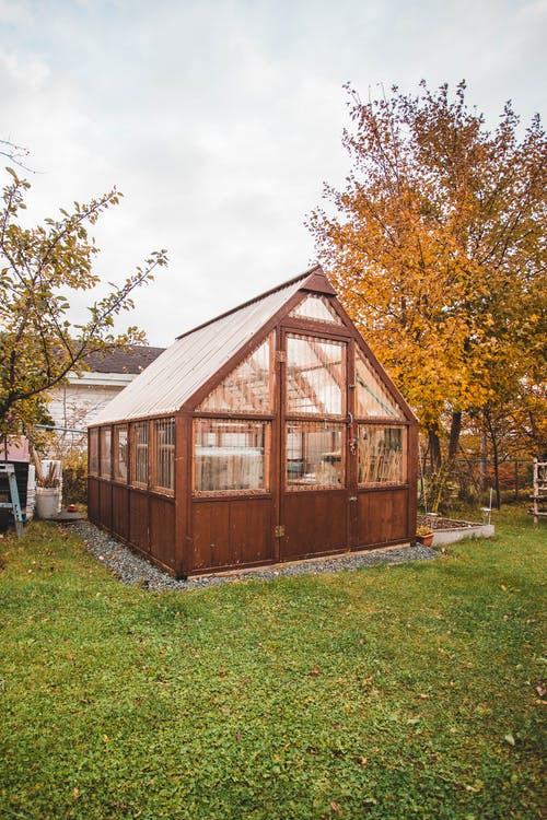 Small Wooden Shed in Autumn