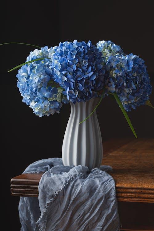 Foto profissional grátis de amor, arranjo de flores, arte