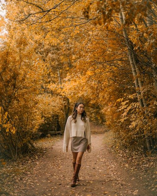 Бесплатное стоковое фото с Взрослый, волнистые волосы, дерево