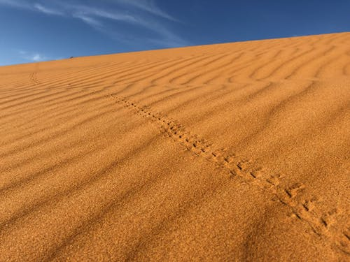 Brown Desert Sand Under Clear Blue Sky