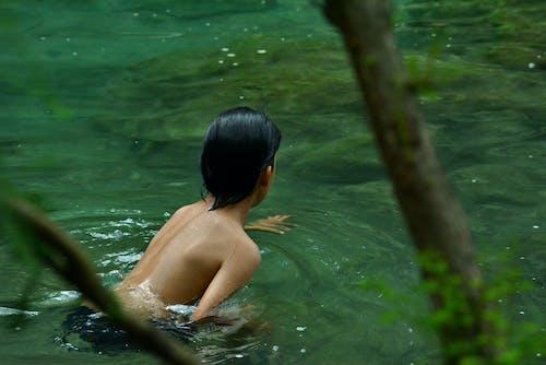 녹색, 멕시코, 물, 밀림의 무료 스톡 사진