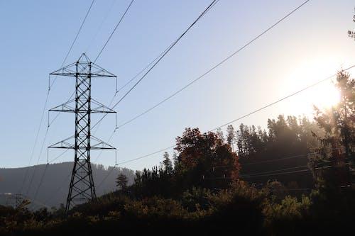 Immagine gratuita di alberi, cavi elettrici, giorno soleggiato, montagna