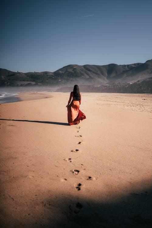 갈색, 걷고 있는, 검은 머리의 무료 스톡 사진