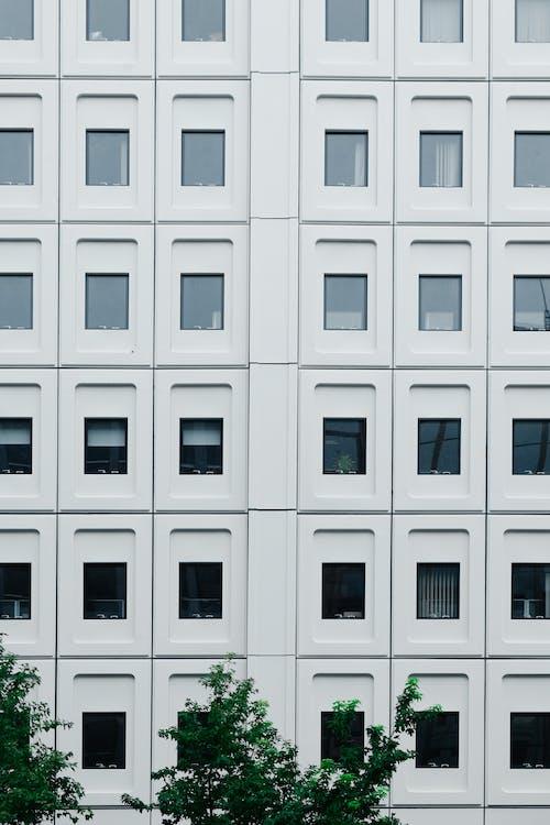 Fotos de stock gratuitas de al aire libre, apartamento, arquitecto