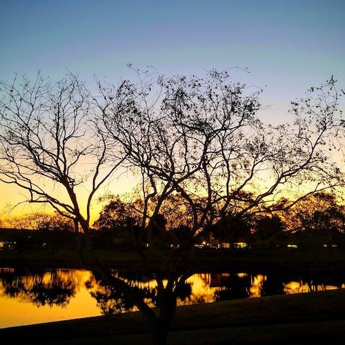 Imagine de stoc gratuită din apus de soare la lac