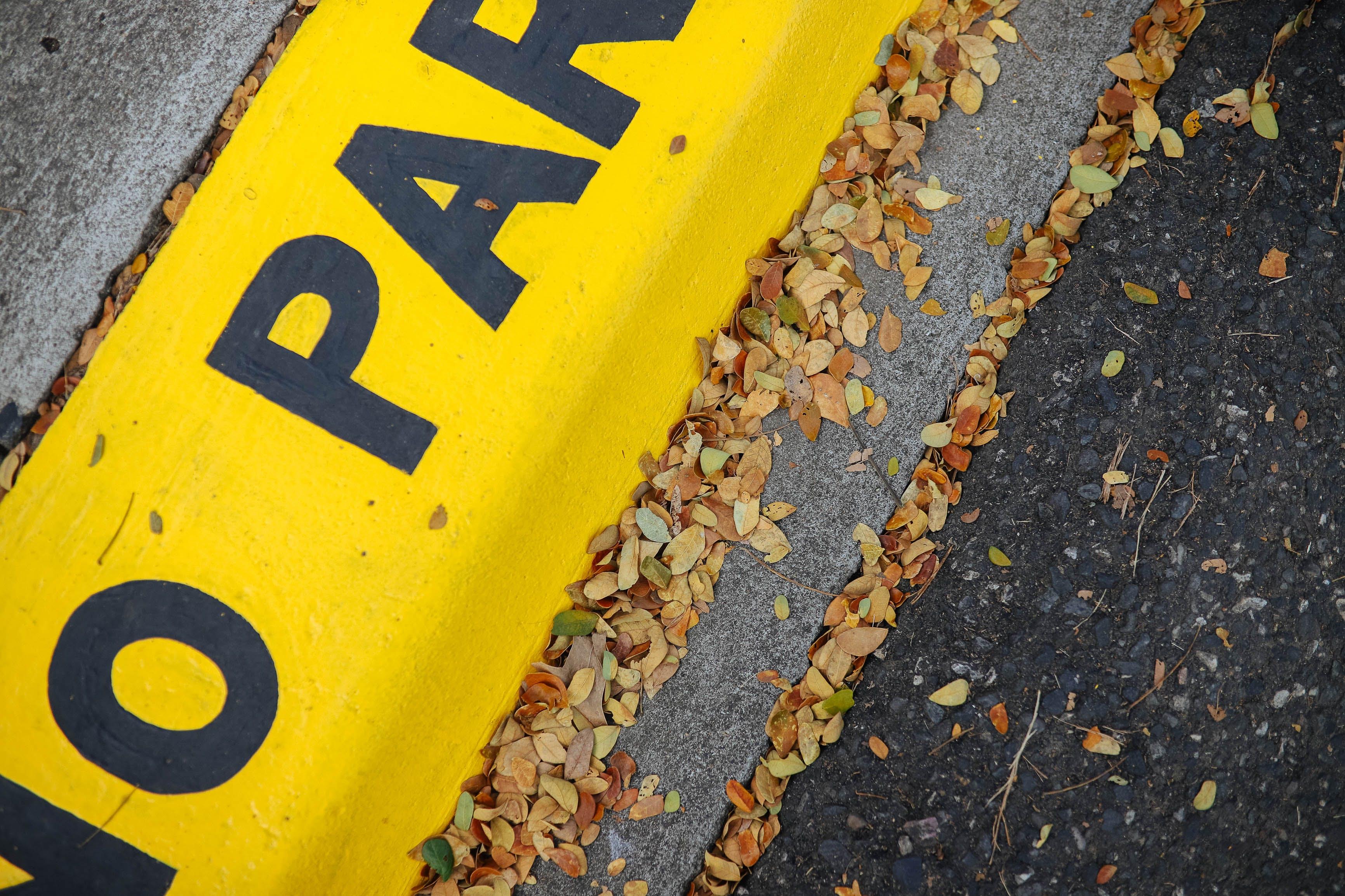 Yellow No Parking Pavement