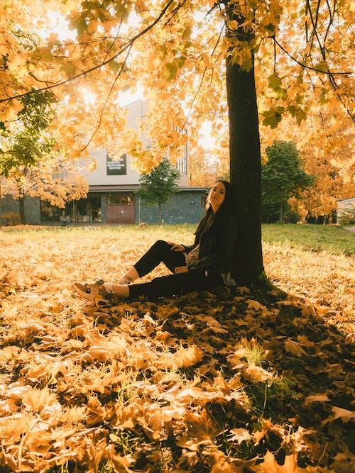 Woman Sitting under Tree on Sunny Autumn Day