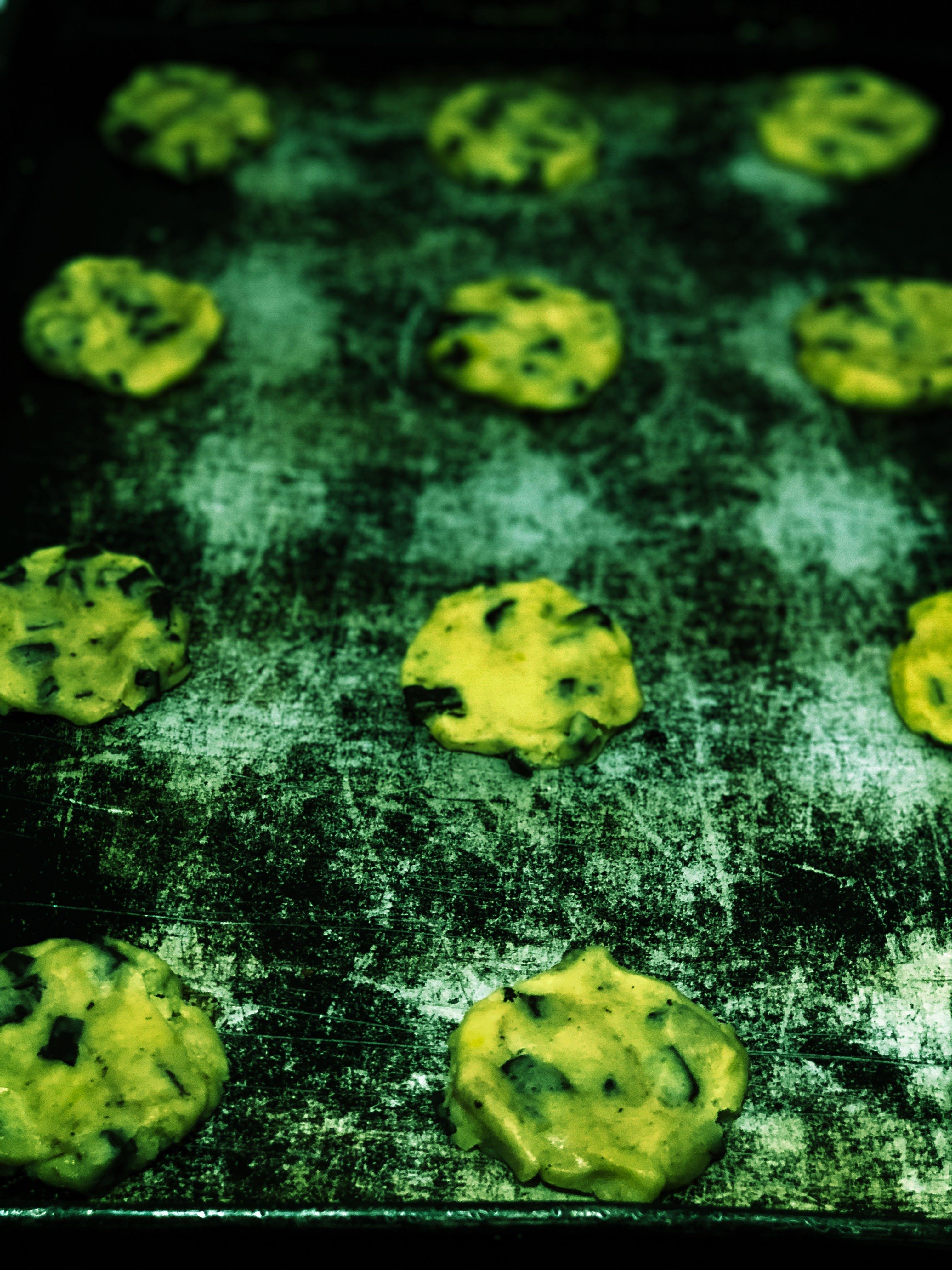 Free stock photo of baking, biscuit, Chocochip, Fresh bake