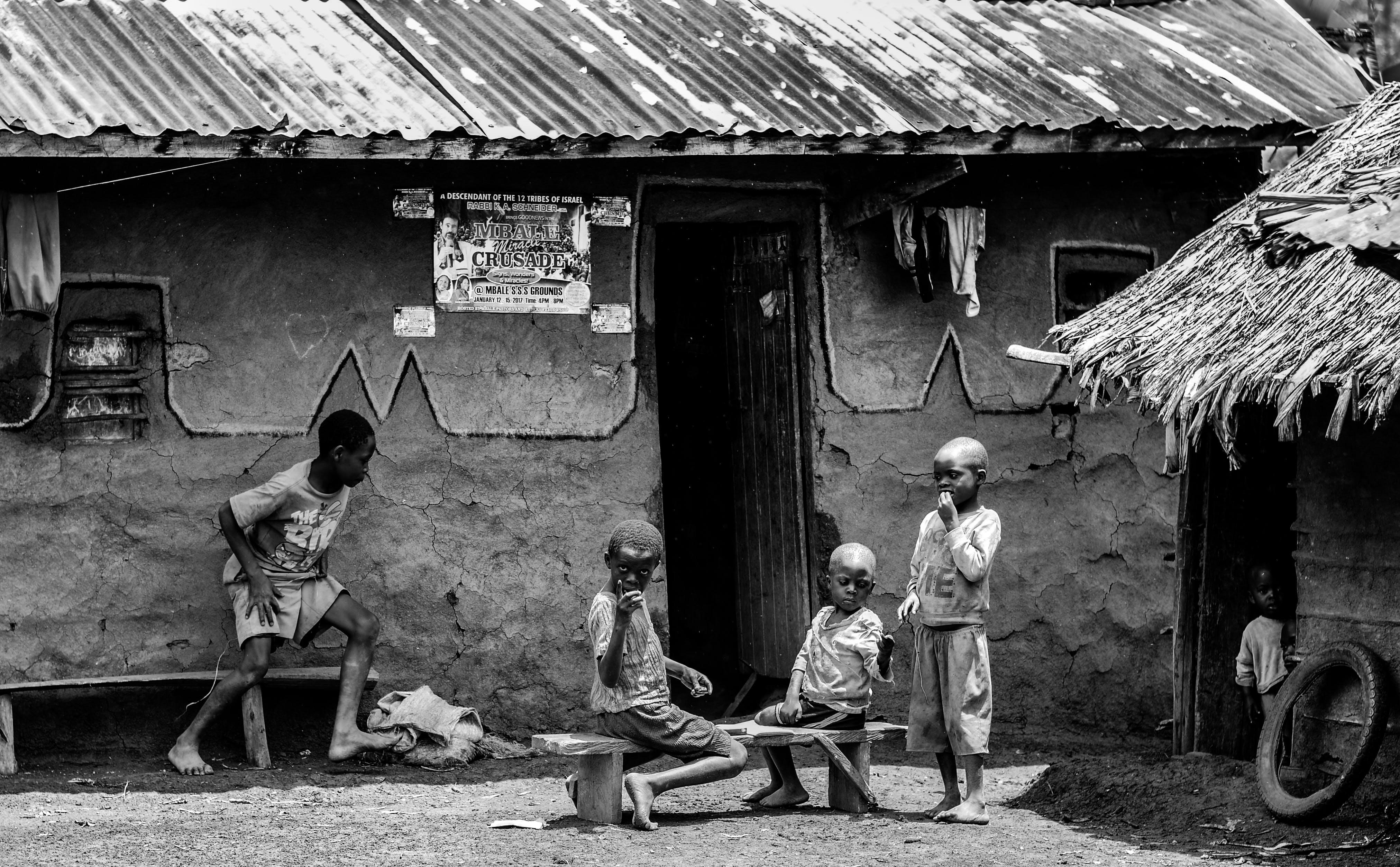 Základová fotografie zdarma na téma denní světlo, děti, kluci, lidé