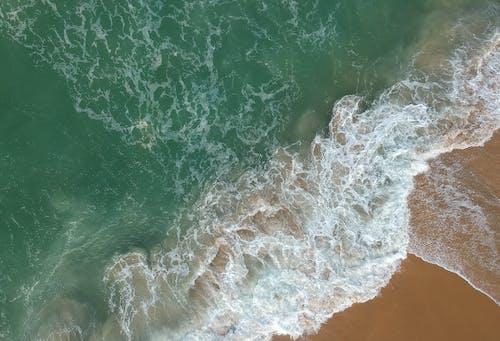 dalga, dalgalar, deniz, deniz kıyısı içeren Ücretsiz stok fotoğraf