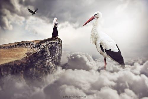 Gratis arkivbilde med himmel, jente, stork