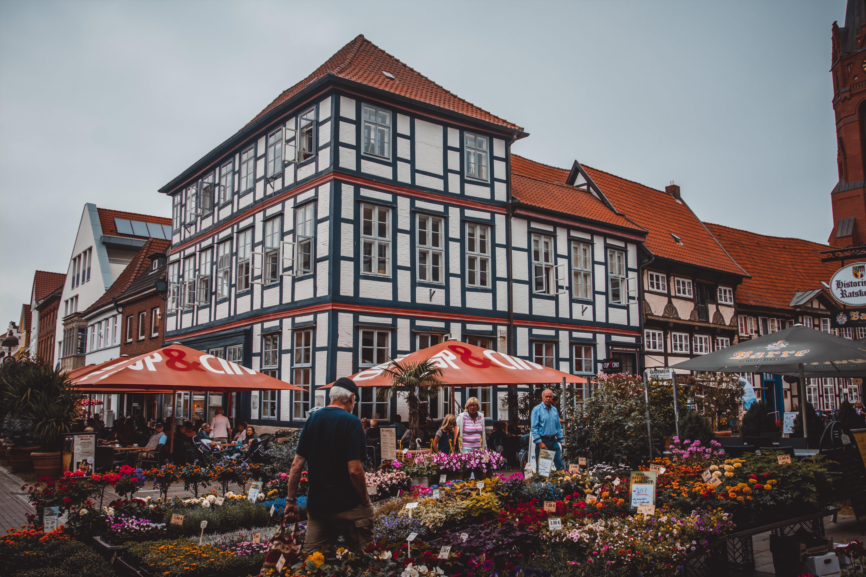 People Standing Beside Flowers Near Building