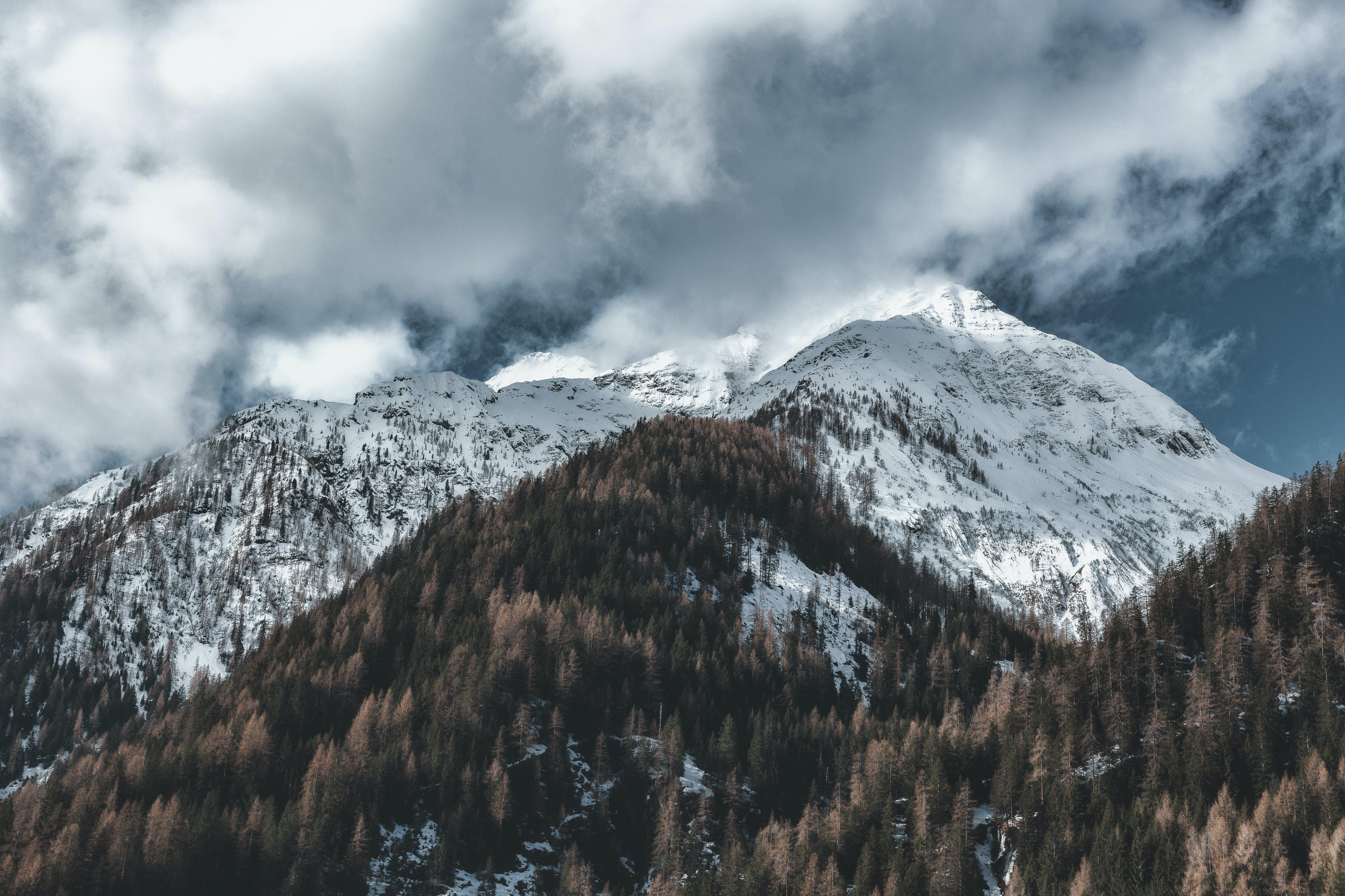 Ingyenes stockfotó befagyott, csúcs, ég, erdő témában