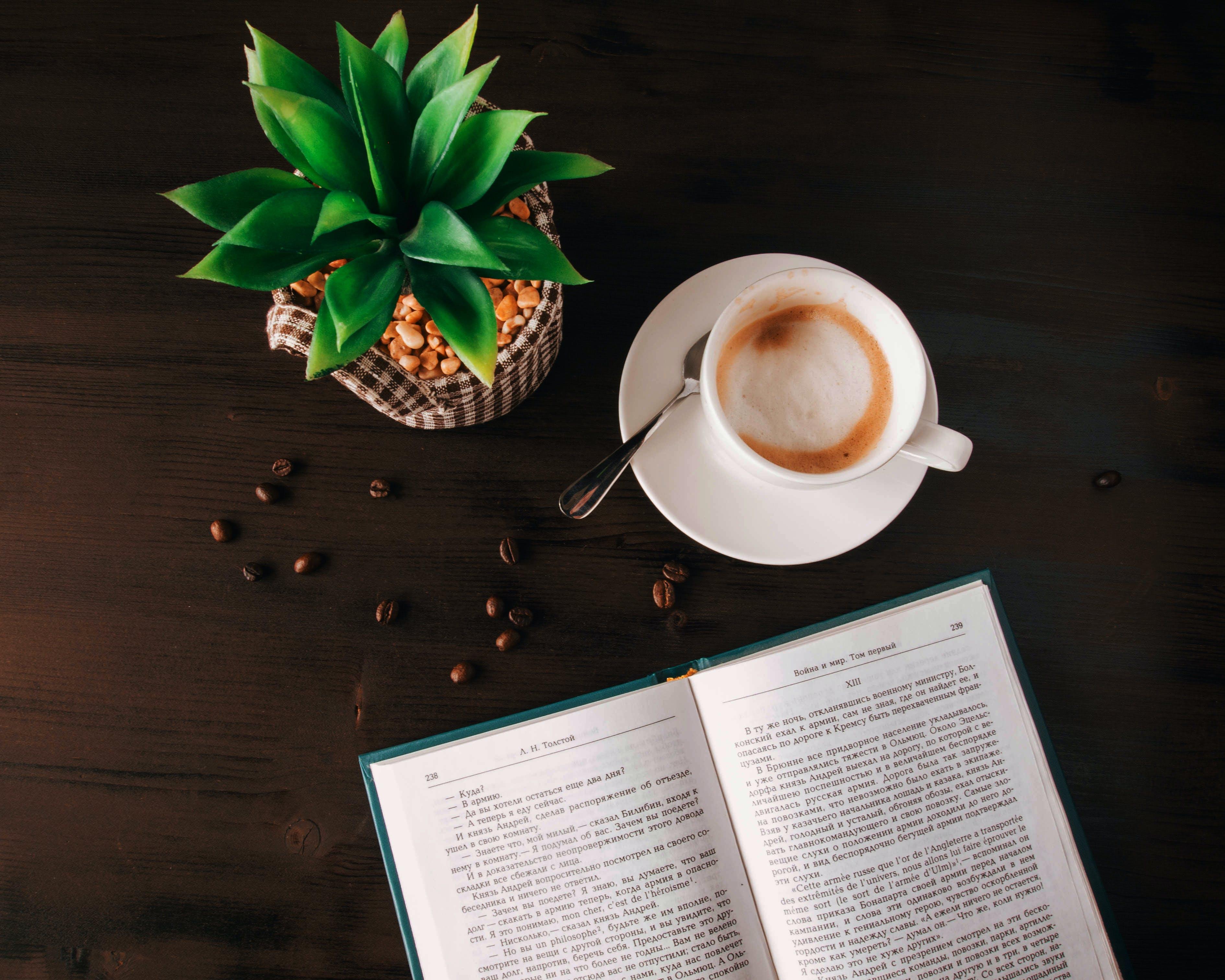 Kostenloses Stock Foto zu holz, bohnen, koffein, tasse