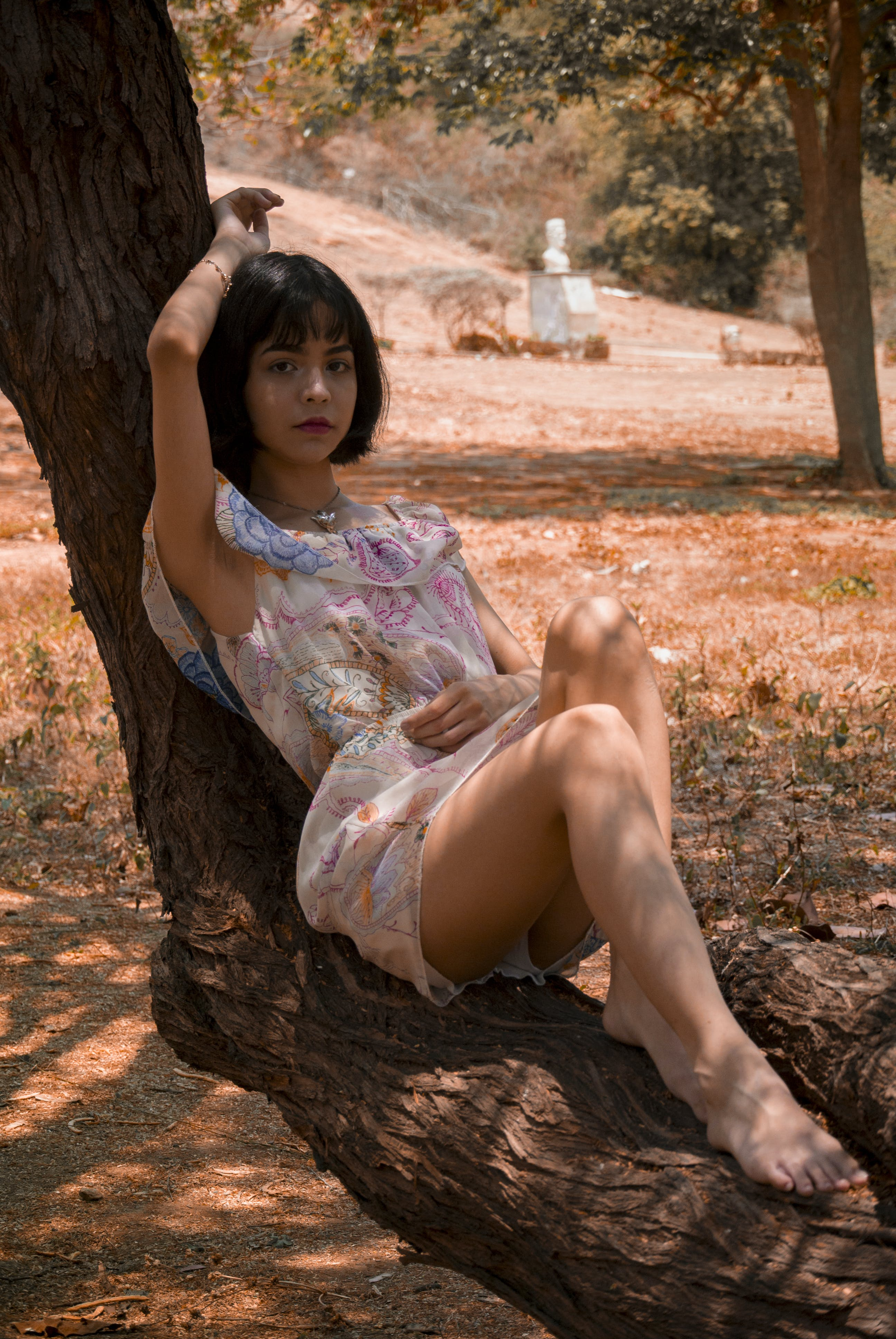 Photography of a Woman Laying on Tree Trunk