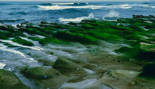 Fotos de stock gratuitas de agua, arrecifes, dice adiós, escénico