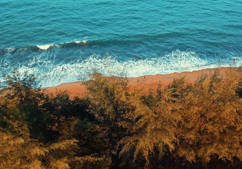 Základová fotografie zdarma na téma čeření, malebný, mávání, moře