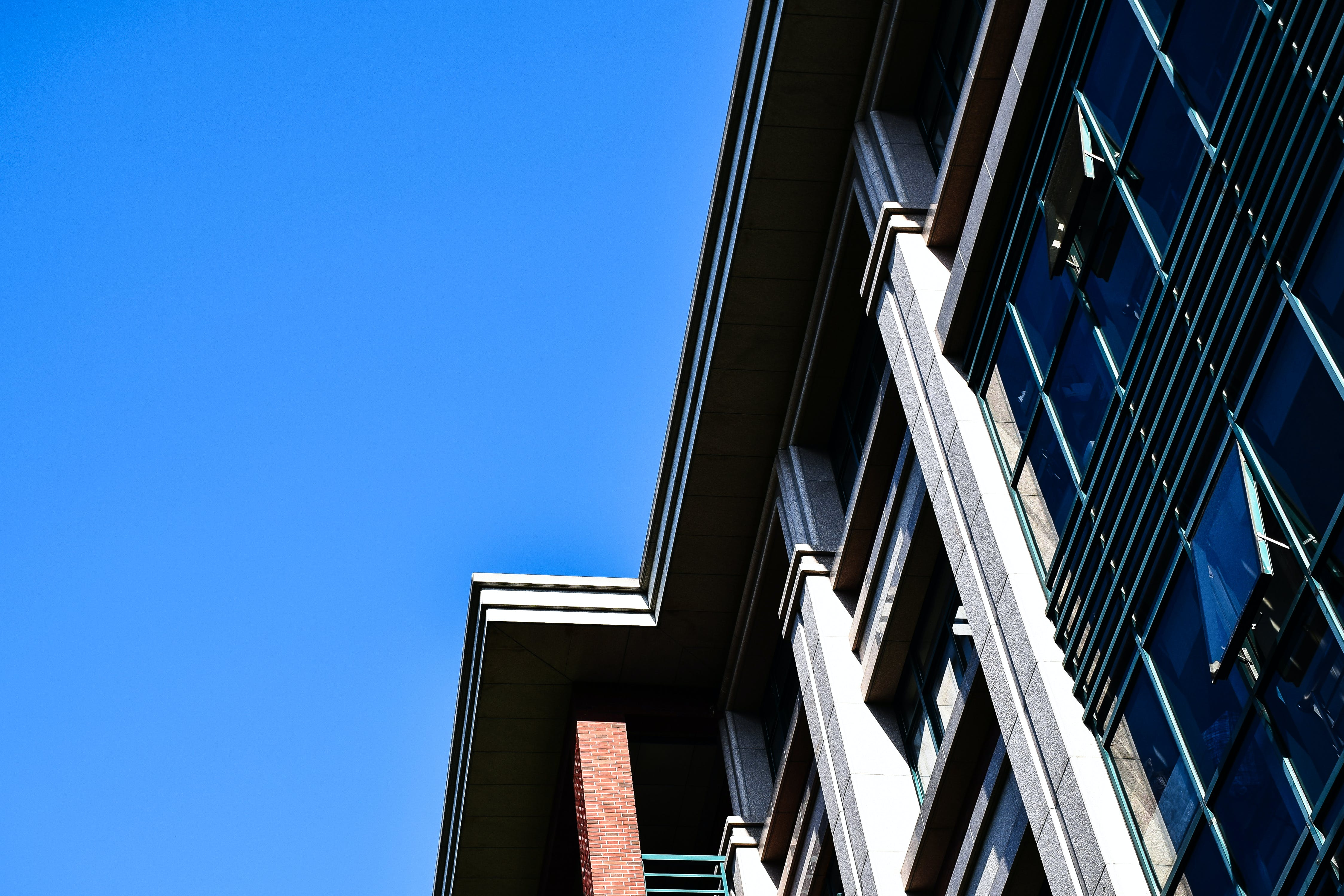 Free stock photo of building, clean, sky, teaching