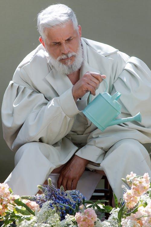 Foto stok gratis agama, background zaitun, berkebun