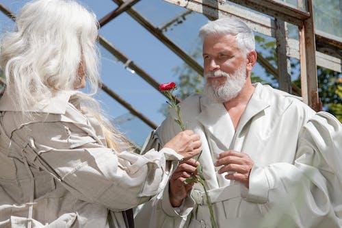 Foto stok gratis agama, berkebun, bunga-bunga