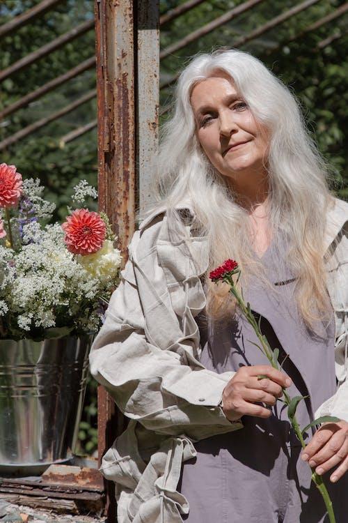 Foto stok gratis bagus, berkebun, bunga