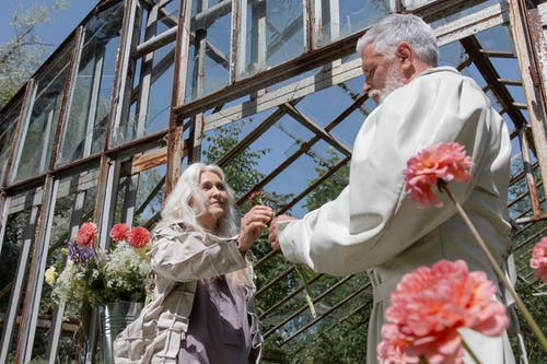 Foto stok gratis agama, berkebun, bunga