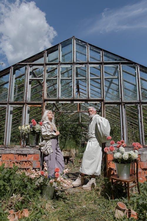 Foto stok gratis agrikultura, Arsitektur, bangunan
