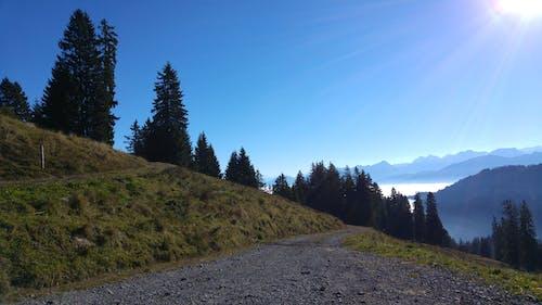 Fotos de stock gratuitas de Alpes, arboles, montaña, nubes