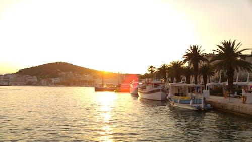 Fotos de stock gratuitas de agua, barcos, mar, palmas