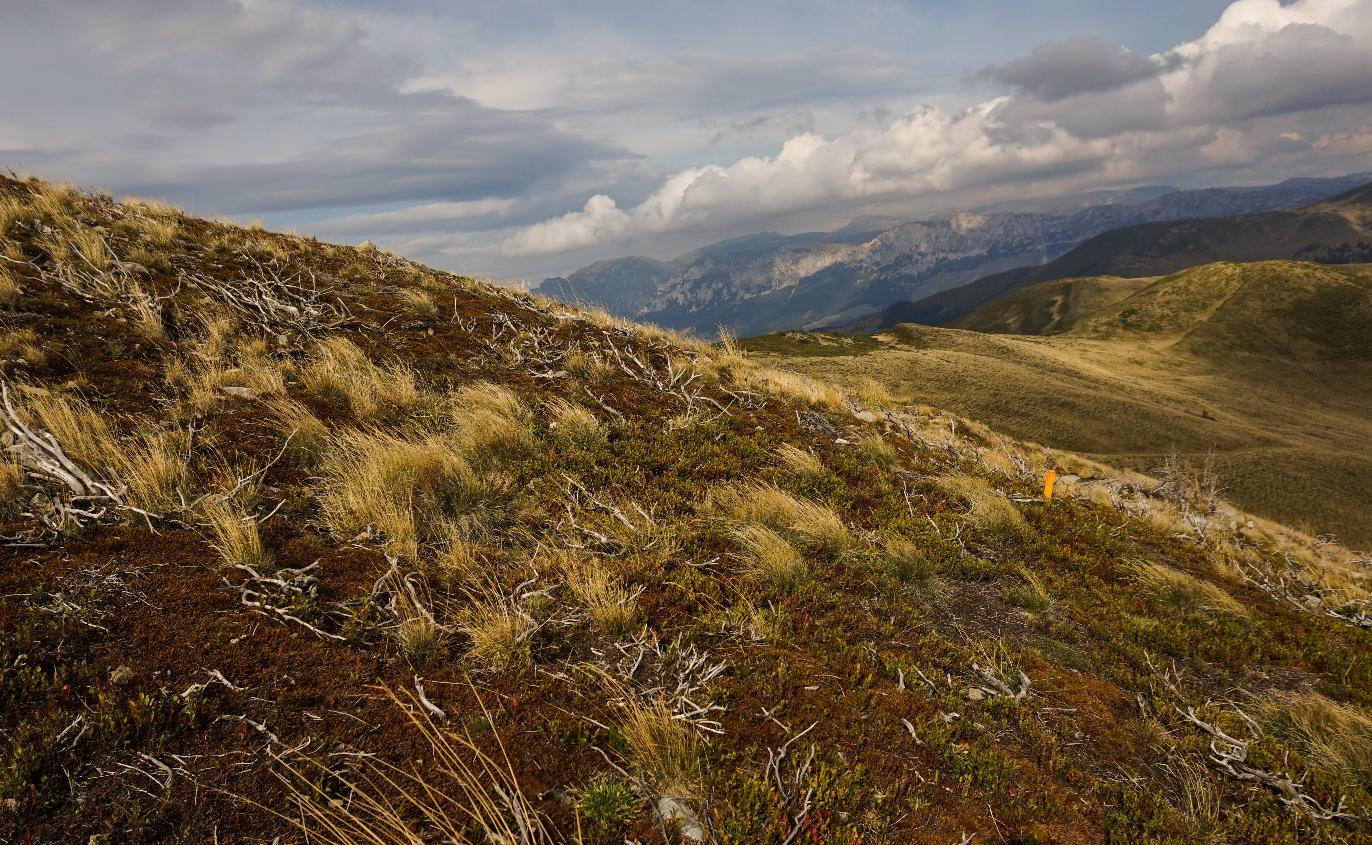 Landscape Photography of Steppe and Mountain Ranges