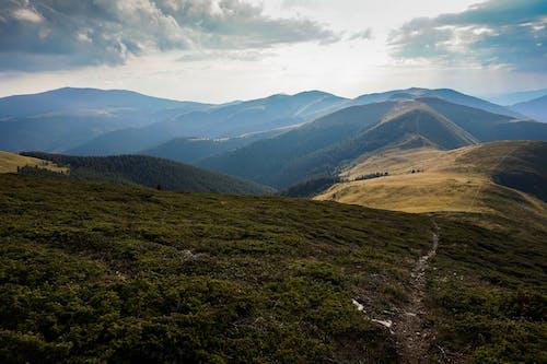 Gratis lagerfoto af bjerge, dal, græs, grøn